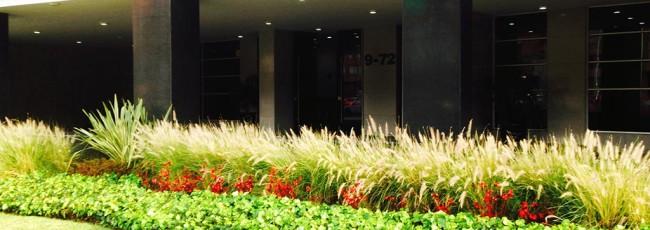 Pasto Verde Afuera del Edificio Global Medical Center