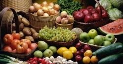 Su Wen y Nutrición